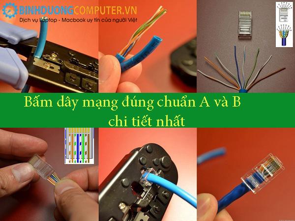 Bấm dây mạng đúng chuẩn A và B chi tiết nhất